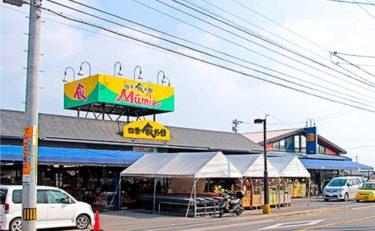 ムーミー川島店